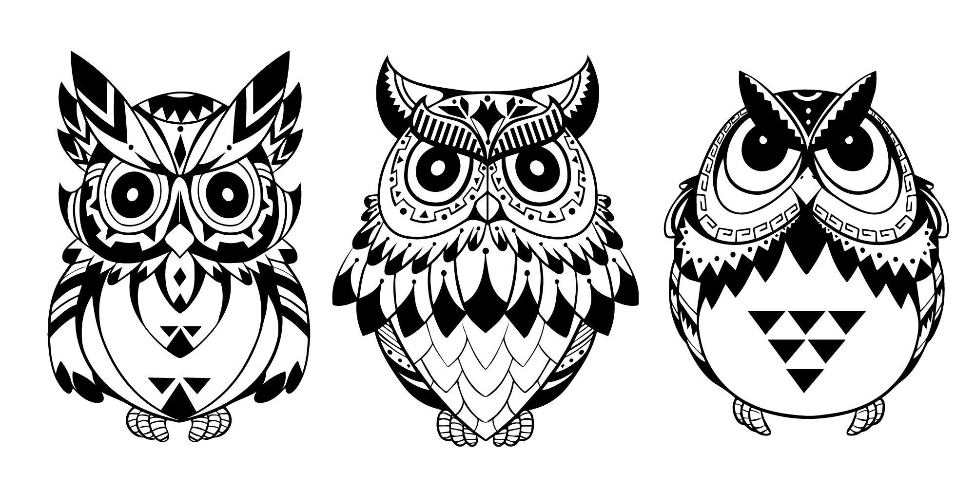 Owls Vector Art Free Vector