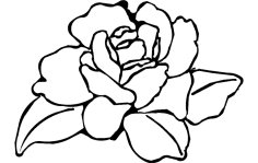 Flower Rose dxf File