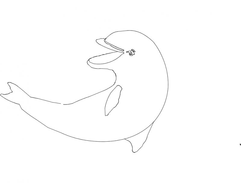 Golfinho (Dolphin) dxf File
