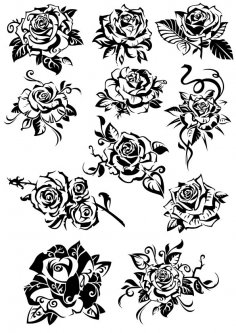 Flowers Roses CDR File
