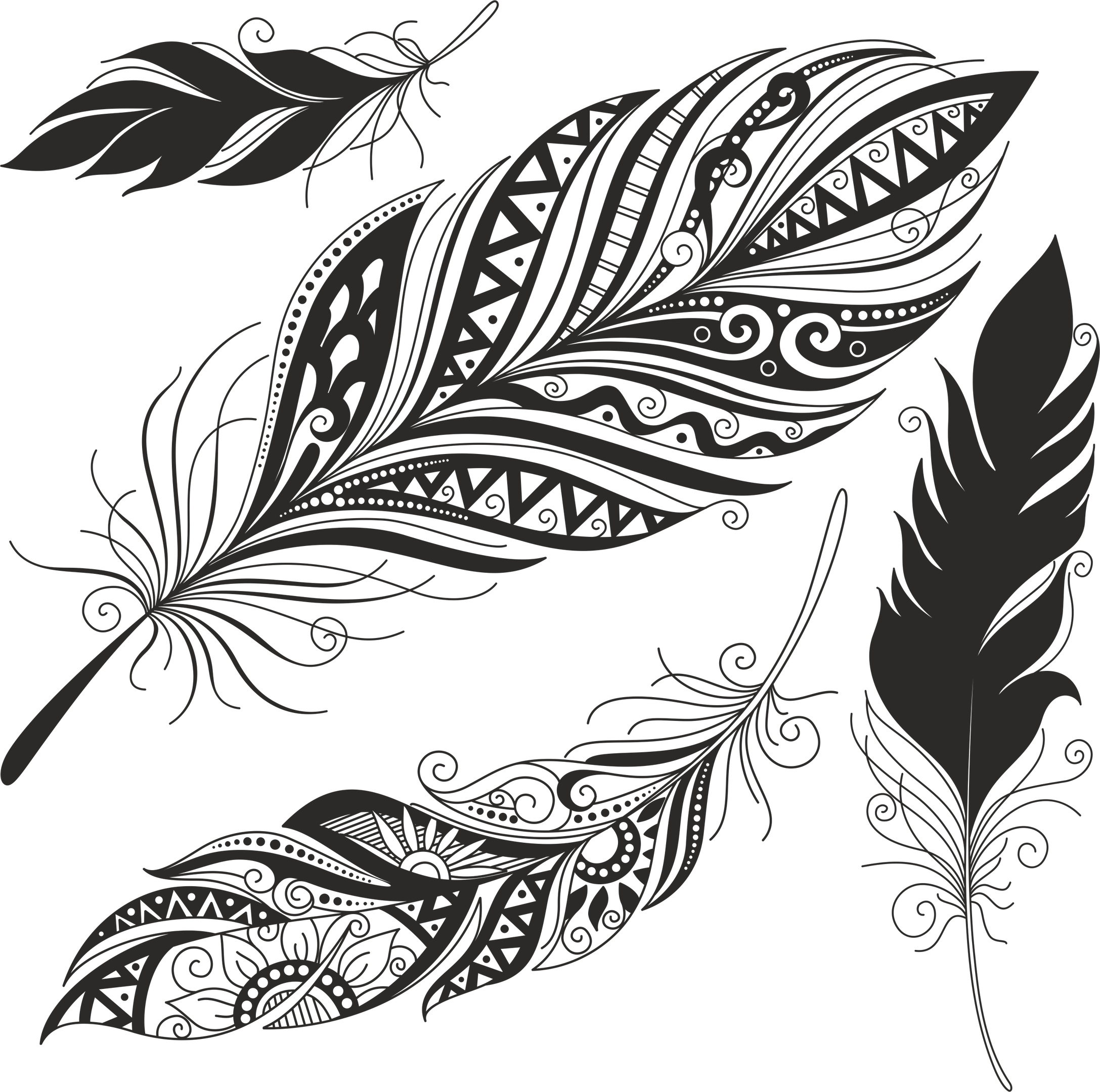 Feather Set Free Vector
