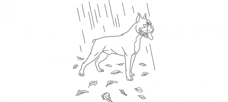 Boxer In The Rain dxf File