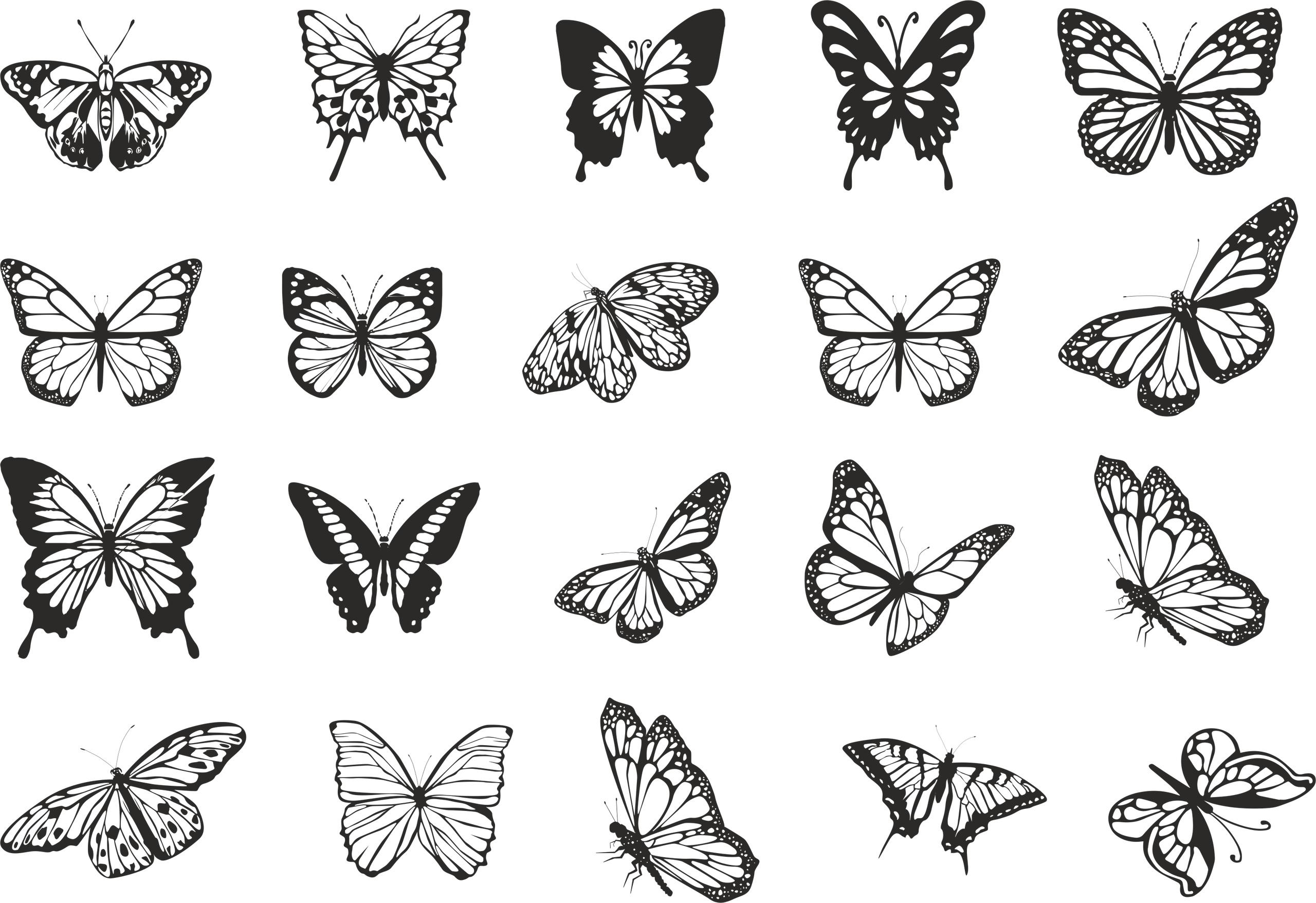 Flying Butterflies Vector Set Free Vector