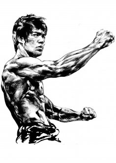 Bruce Lee Vector For Laser Engraving Free Vector