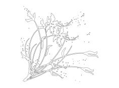 Floral Pattern dxf File