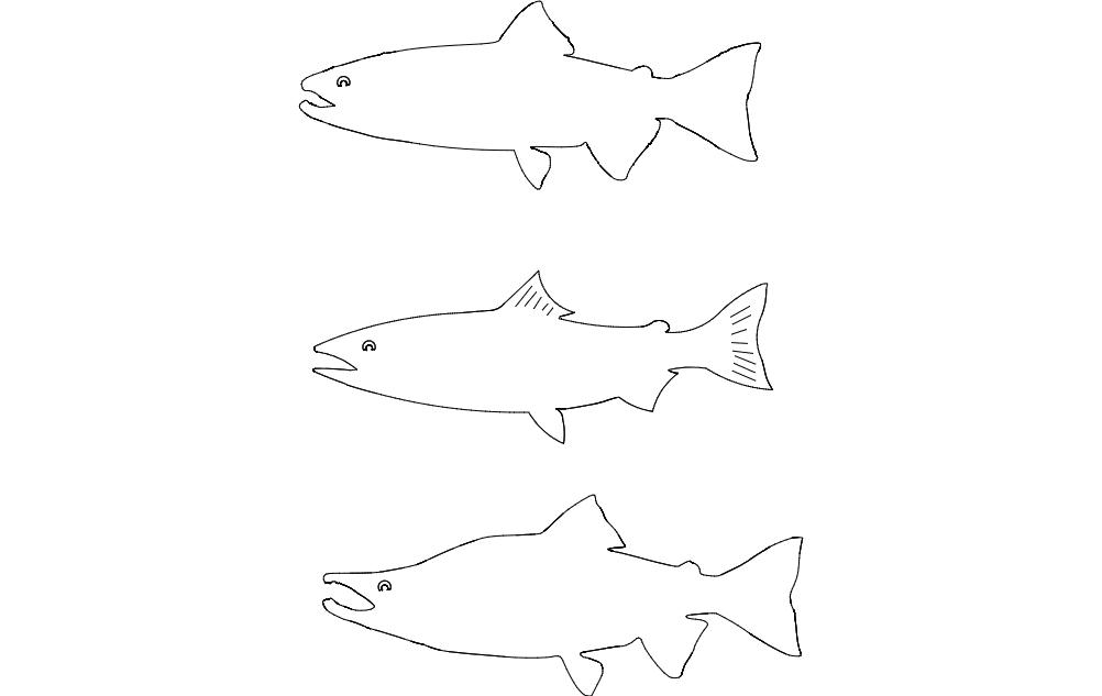 Kokanee salmon dxf File