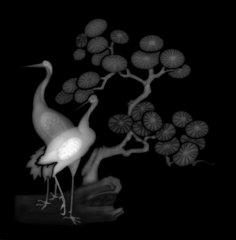 3d Grayscale Image Birds BMP File