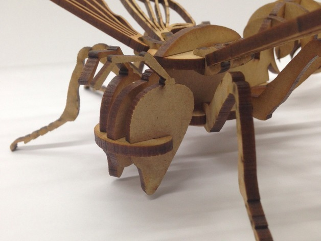 Bee 3D dxf File