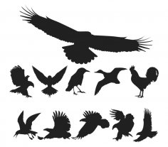 Free Vector Birds Pack CDR File