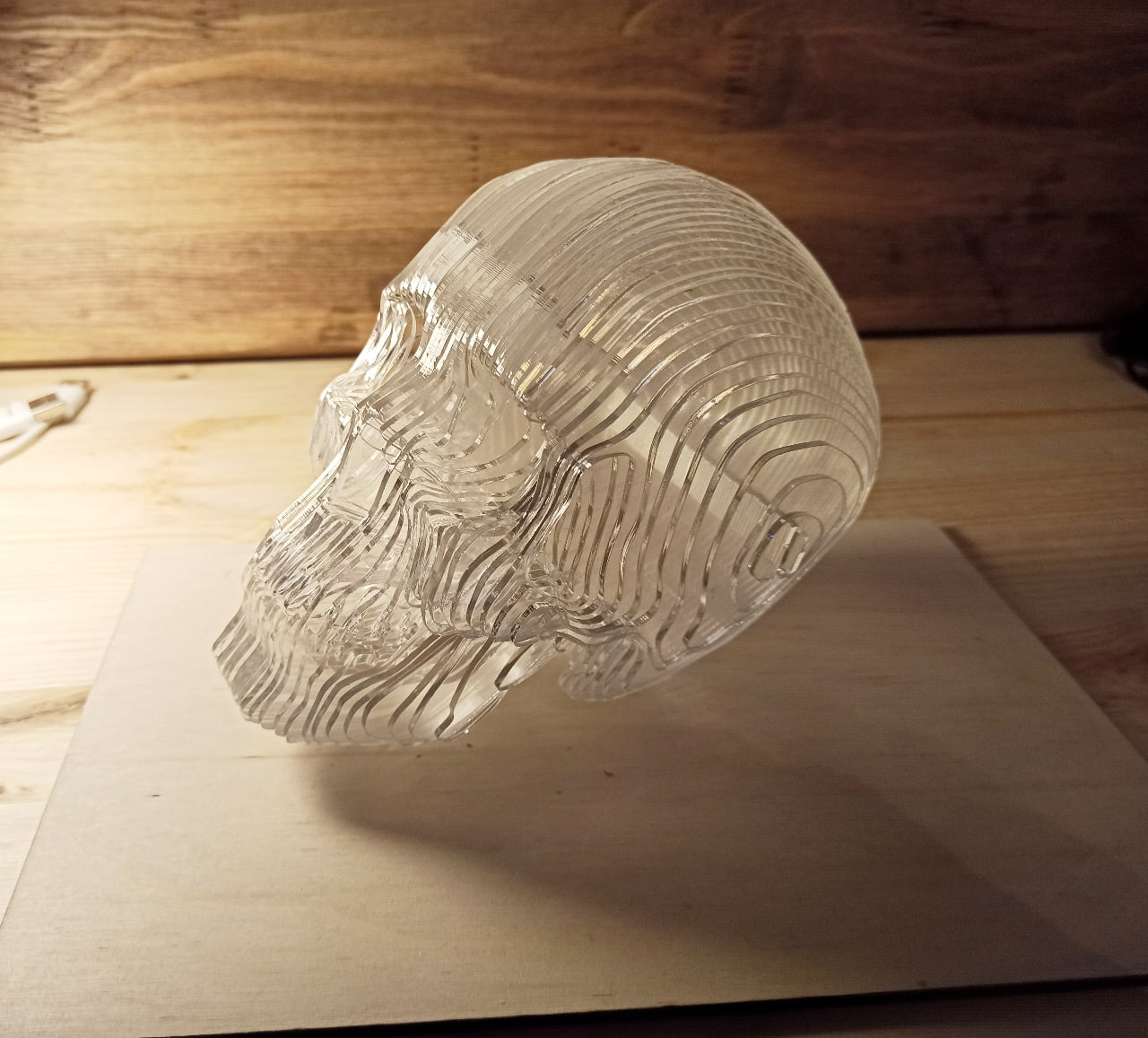 Laser Cut Acrylic 3D Skull Model Free Vector