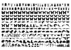 Insect Silhouette Vector Art Free Vector