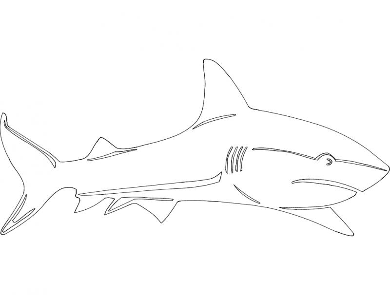 Shark dxf File