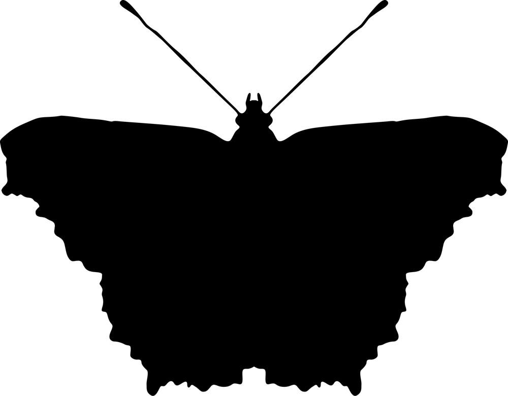 Black Butterfly Free Vector