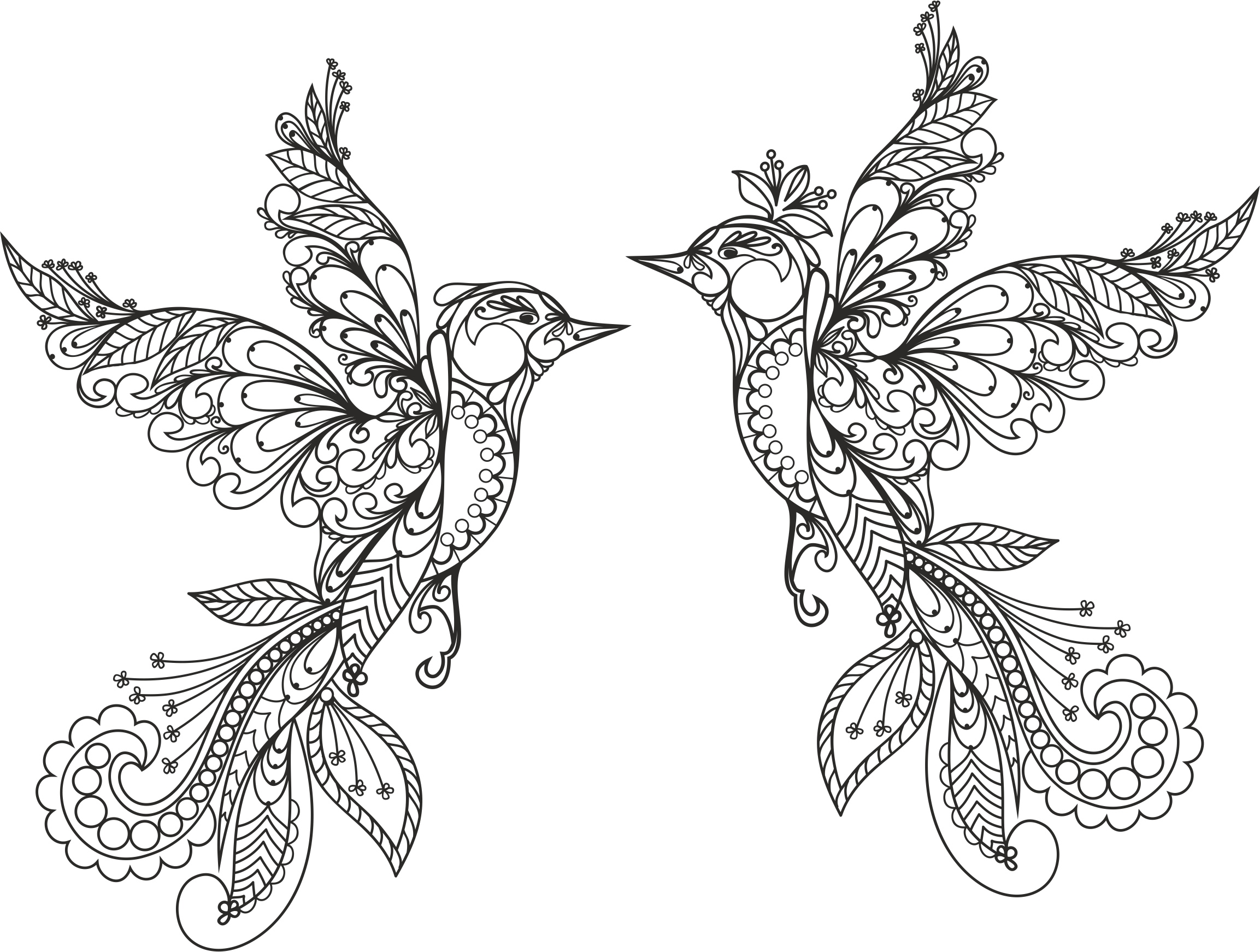 Ornament Birds Vector Free Vector