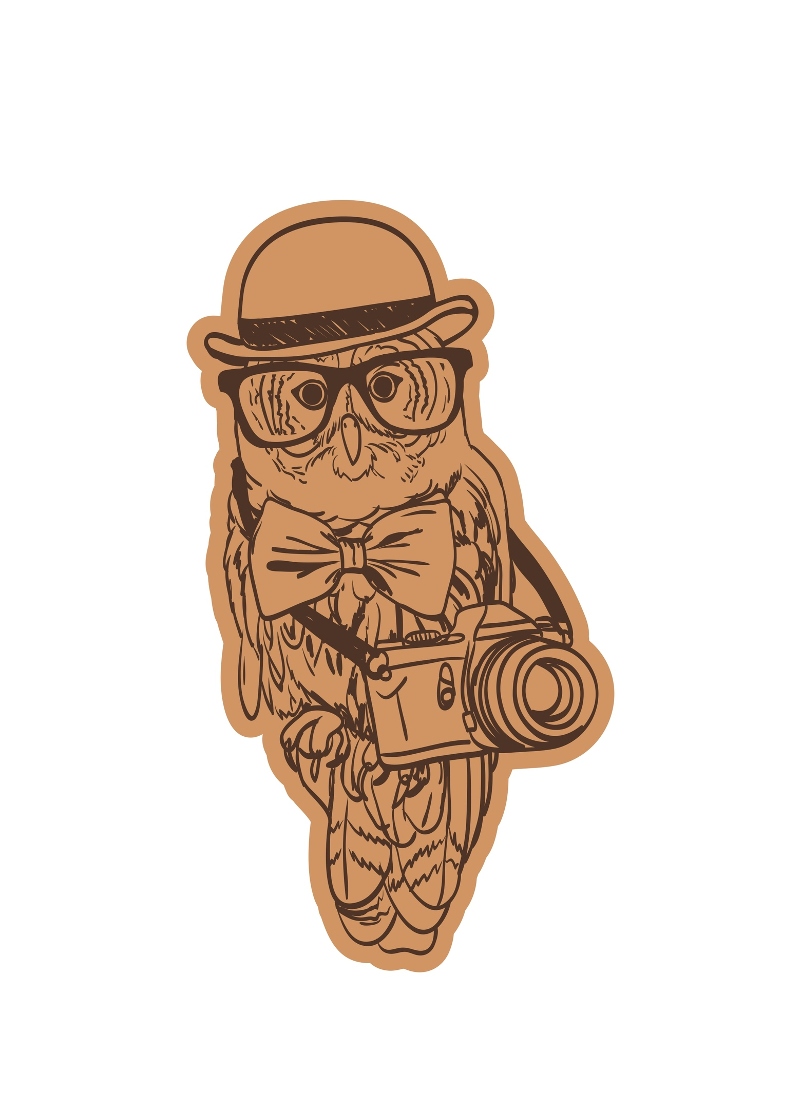 Owl Wearing Cap With Camera And Glasses Laser Cut Engraving Template Free Vector