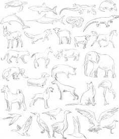 Handdrawn Animals Set Free Vector