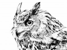 Eagle Owl Laser Engraving Template BMP File