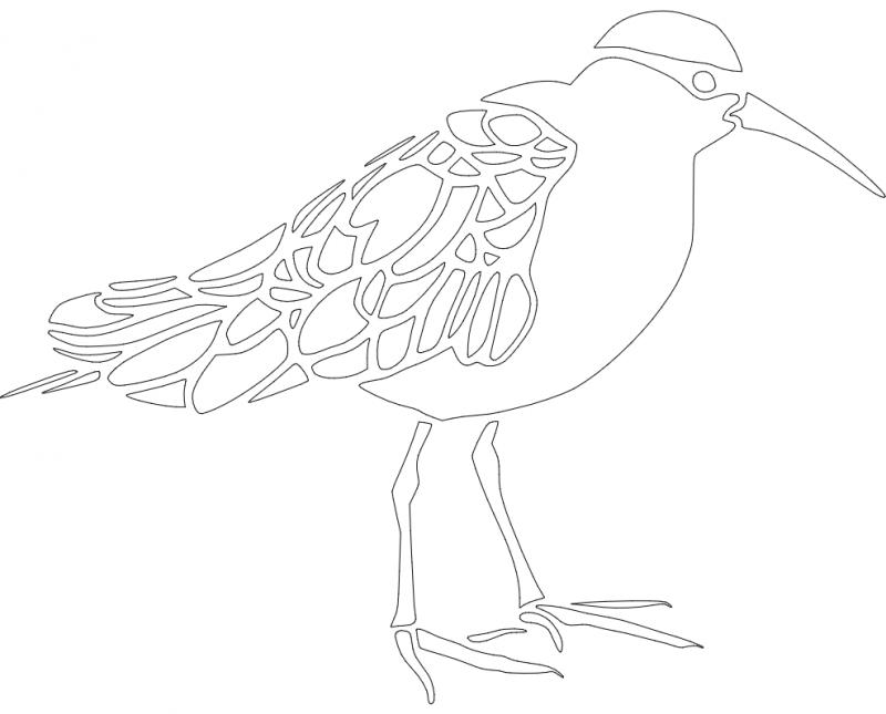 Bird dxf File