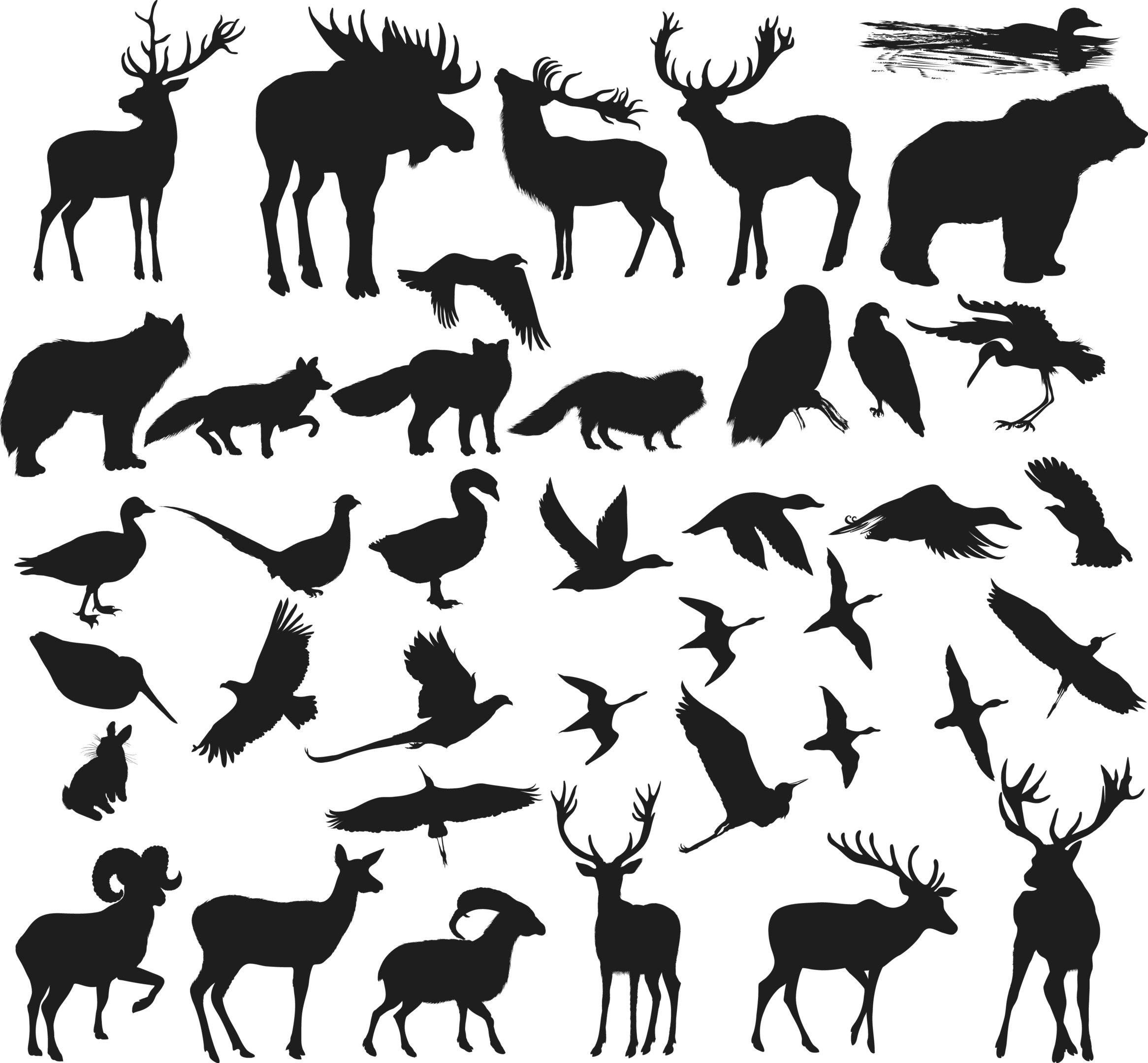 Animals Shapes Silhouettes Vectors Free Vector