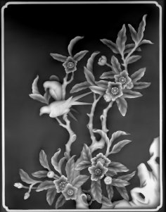 3D Grayscale Image 82 BMP File