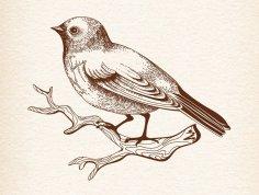 Sitting Bird DXF File