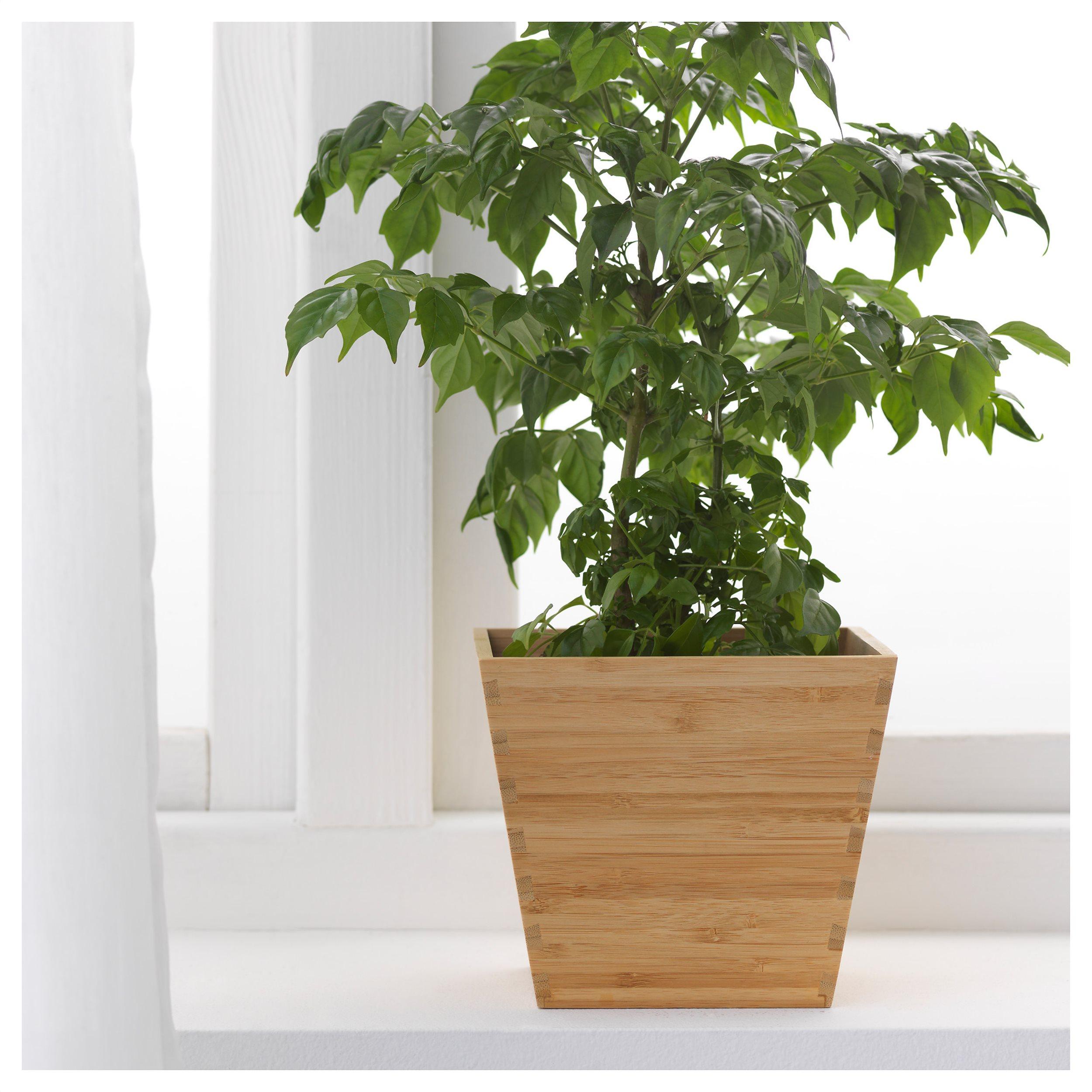 Laser Cut Wooden Plant Pot Flower Holder Free Vector