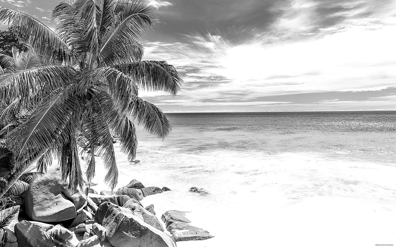 Laser Cut Engrave Beach Scene Free Vector