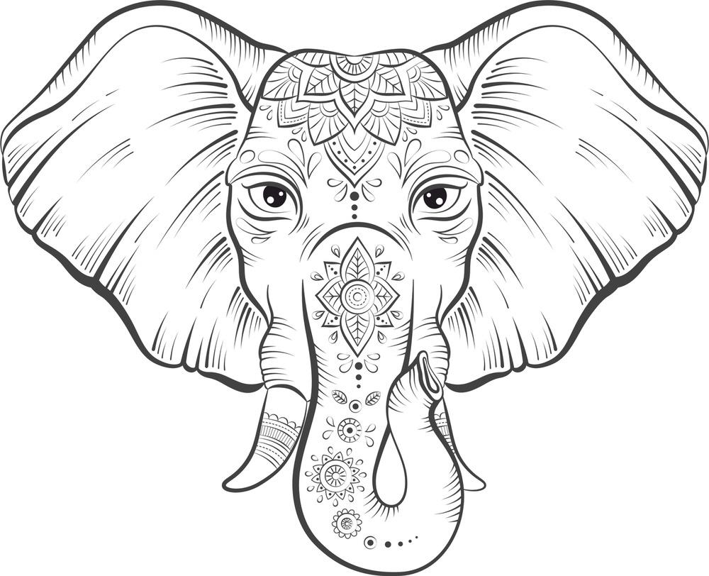 Elephant Lotus Vector Free Vector