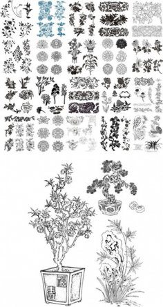 Collection Of Floral Pattern Vector Free Vector