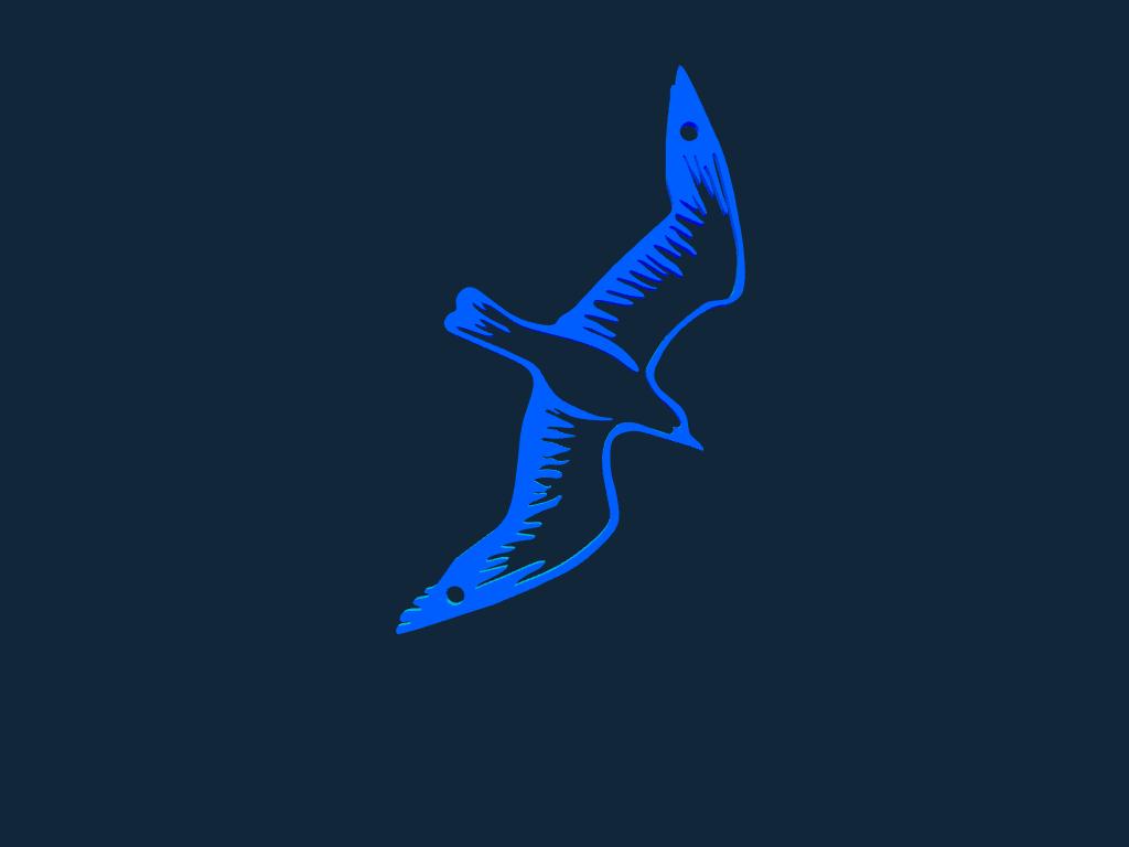 Seagull stl file
