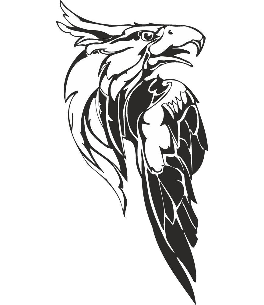 Eagle Predatory Bird Illustration Vector Free Vector