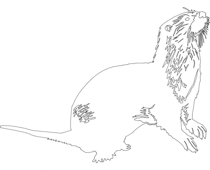 Animals 2.38 dxf File
