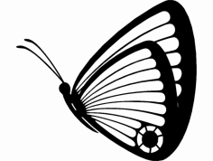 Butterfly 05 dxf File