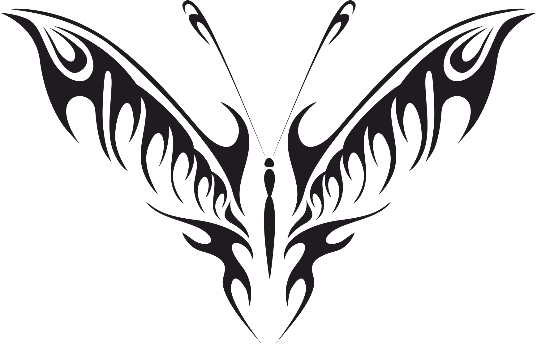 Butterfly Vector Art CDR File