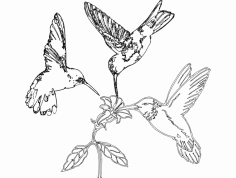 Humming Birds and Flower dxf File