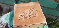 Laser Cut Box With Turtle Engraved 3mm Free Vector