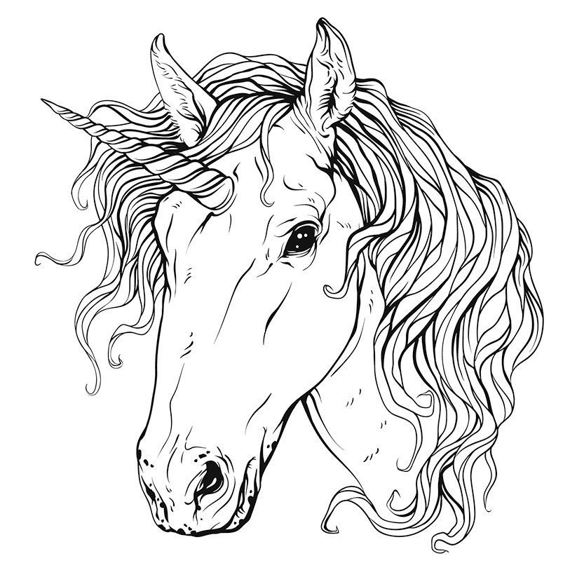Unicorn Head Free Vector