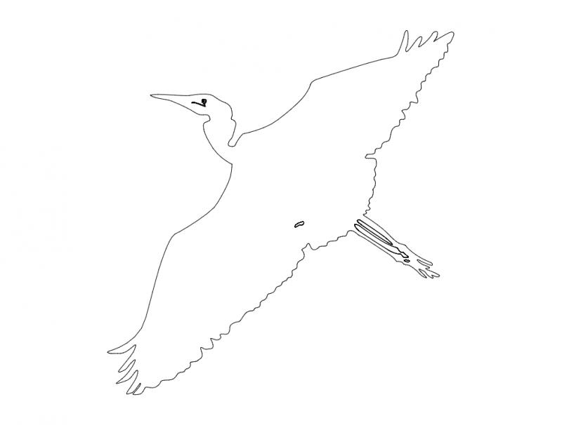 egret-flyby-outline-ba dxf File