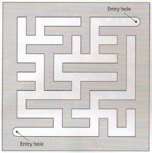 maze.dxf