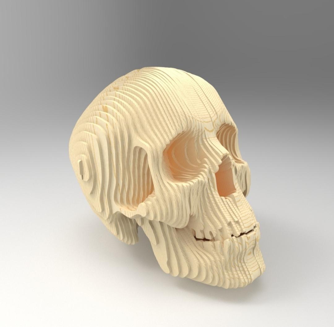 Laser Cut 3D Wooden Skull Free Vector