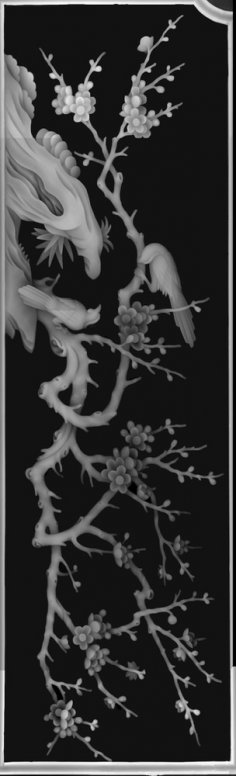 3D Grayscale Image 89 BMP File