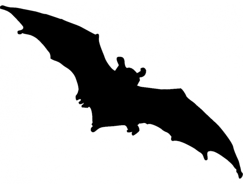 Bat dxf File