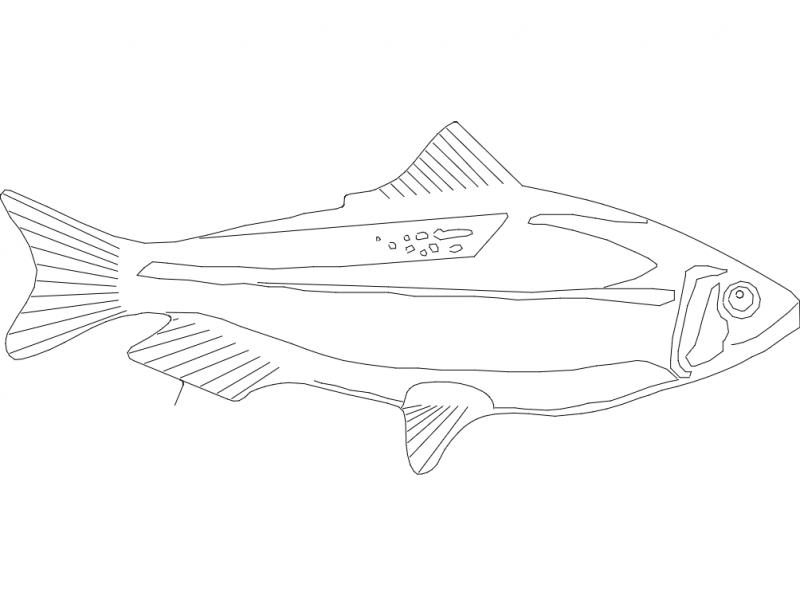 Fishs dxf File