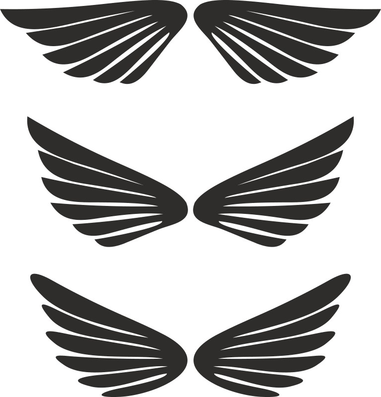 Free Wing Vector Free Vector