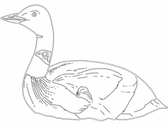 Duck dxf File