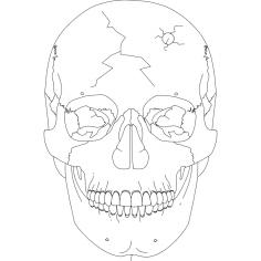 Skull 2 dxf File