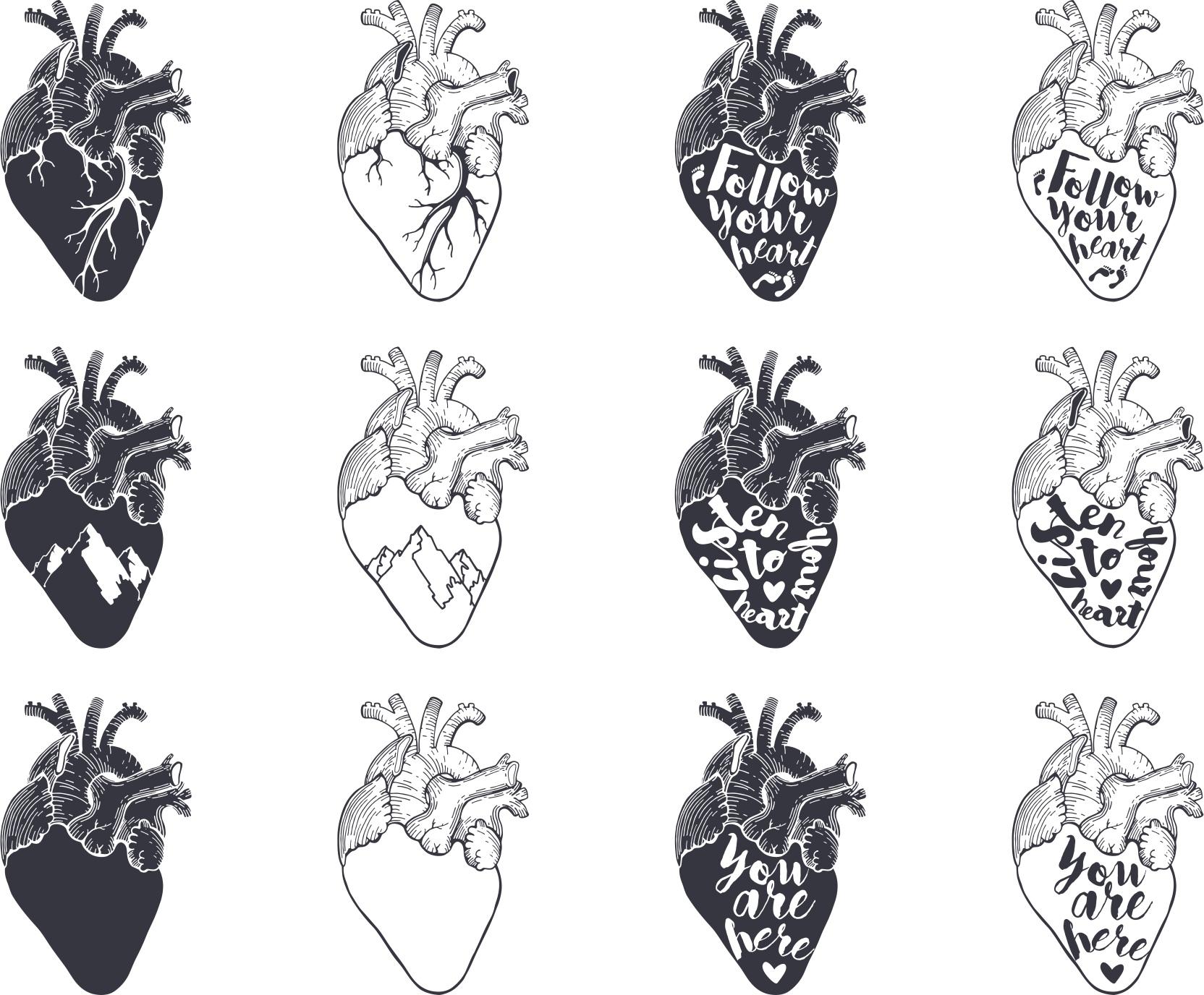 Heart Vector Set CDR File