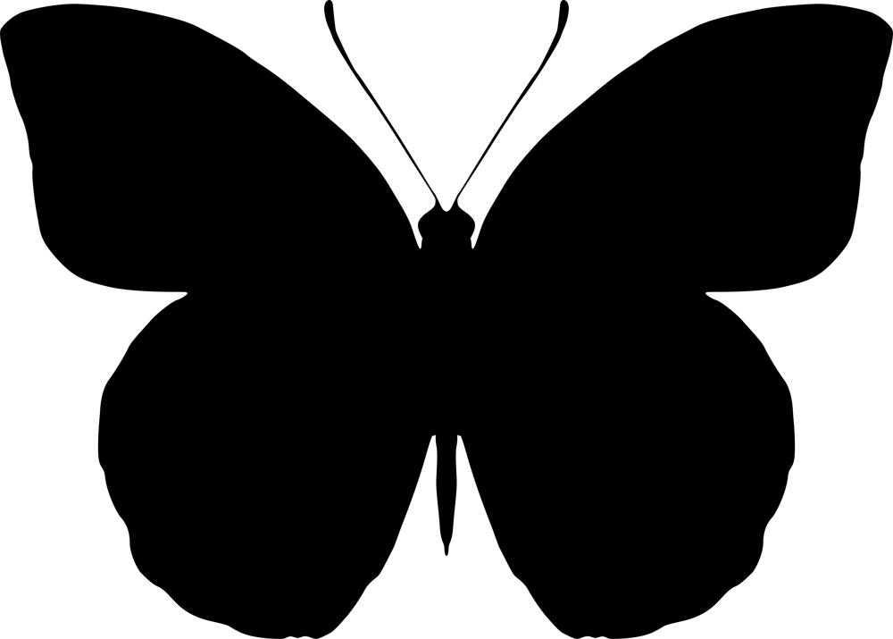 Butterfly Pattern Free Vector