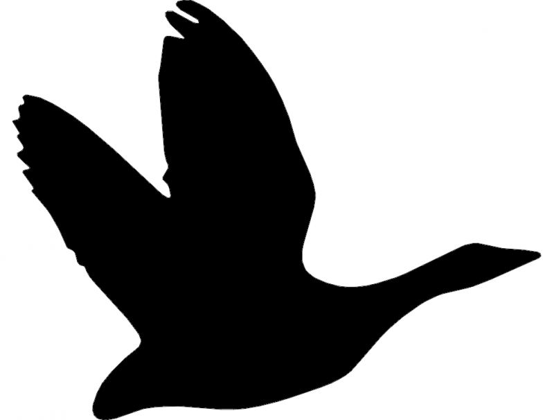 Ganso 2(Goose) dxf File