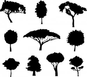 Different Trees dxf file